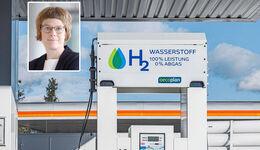 Die neue Wirtschaftsweise Veronika Grimm setzt auf Wasserstoff